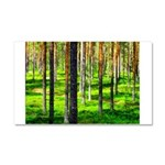 Pine forest Car Magnet 20 x 12