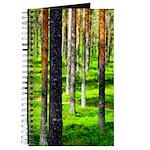Pine forest Journal