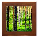 Pine forest Framed Tile