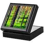 Pine forest Keepsake Box