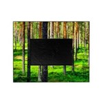 Pine forest Picture Frame
