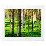 Pine forest King Duvet