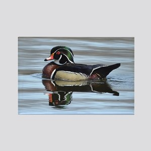 Male wood duck Rectangle Magnet