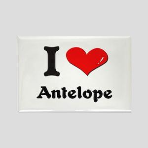 I love antelope Rectangle Magnet