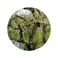 Crow Tree 3.5