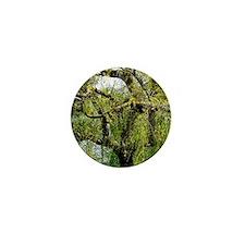 Crow Tree Mini Button