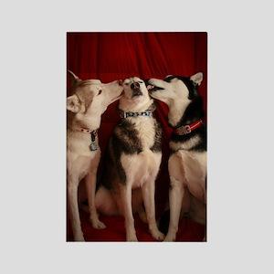 Kissing Huskies Rectangle Magnet