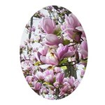 magnolia madness Ornament (Oval)