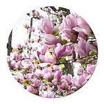 magnolia madness Round Car Magnet