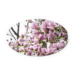 magnolia madness Oval Car Magnet