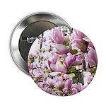 magnolia madness 2.25