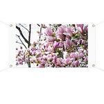 magnolia madness Banner