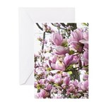 magnolia madness Greeting Cards