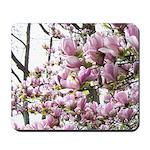 magnolia madness Mousepad