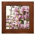 magnolia madness Framed Tile
