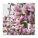 magnolia madness Tile Coaster