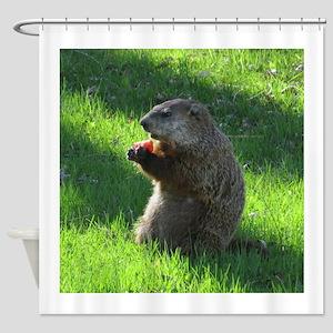 Groundhog Shower Curtain