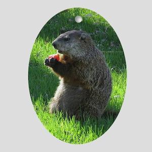 Groundhog Ornament (Oval)