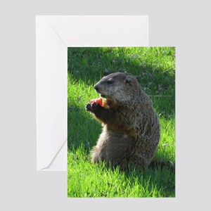 Groundhog Greeting Cards