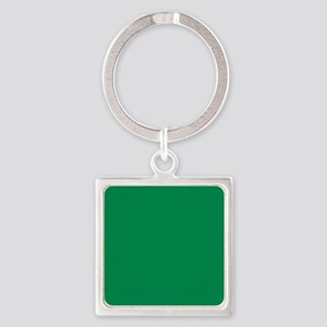 Green solid color Keychains