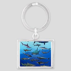 Shark Gathering Keychains