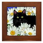 Black Cat Daisies Framed Tile