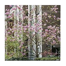 magnolia street Tile Coaster