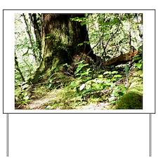forest light4 Yard Sign