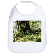 forest light4 Bib