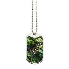 forest light Dog Tags