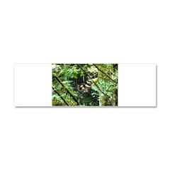 forest light Car Magnet 10 x 3