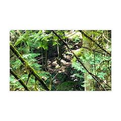 forest light Decal Wall Sticker