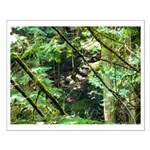 forest light Small Poster