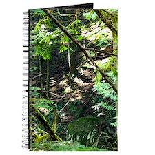 forest light Journal