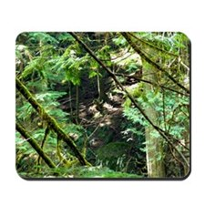 forest light Mousepad