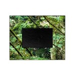 forest light Picture Frame