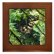 forest light Framed Tile