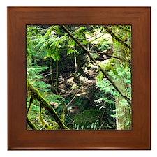 forest light Framed Tile