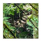 forest light Tile Coaster