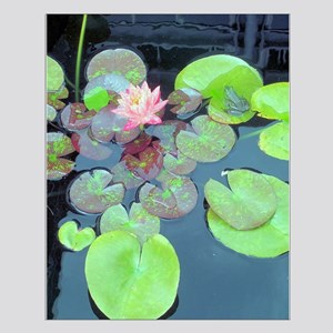 Lily Pads with Frog Small Poster