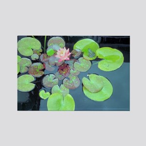Lily Pads with Frog Rectangle Magnet