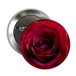 "Red Rose 2.25"" Button (10 pack)"