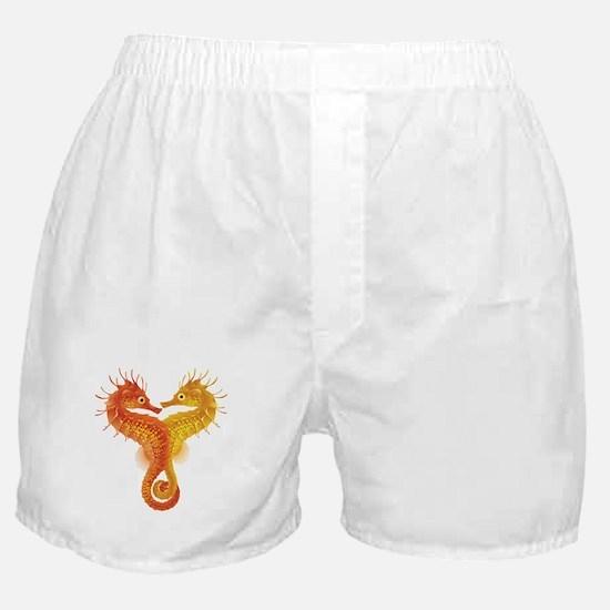 Seahorse Dance Boxer Shorts