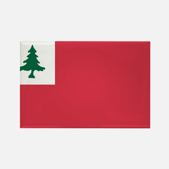 Continental Flag Rectangle Magnet