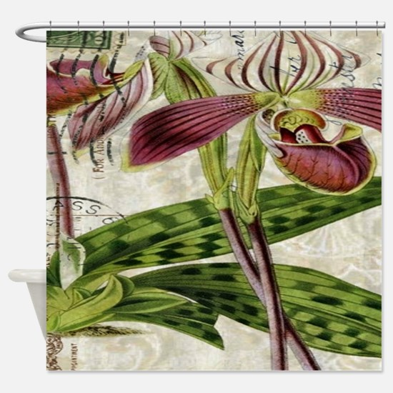 orchid french botanical art paris fashion Shower C