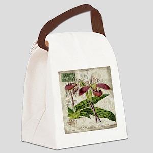 orchid french botanical art paris fashion Canvas L