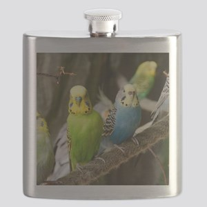 Budgie Flask