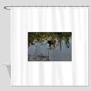 Great Blue Heron Takes Flight Shower Curtain