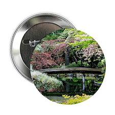 Blossoms and Bridge 2.25