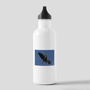 Great Blue Heron Flying Water Bottle